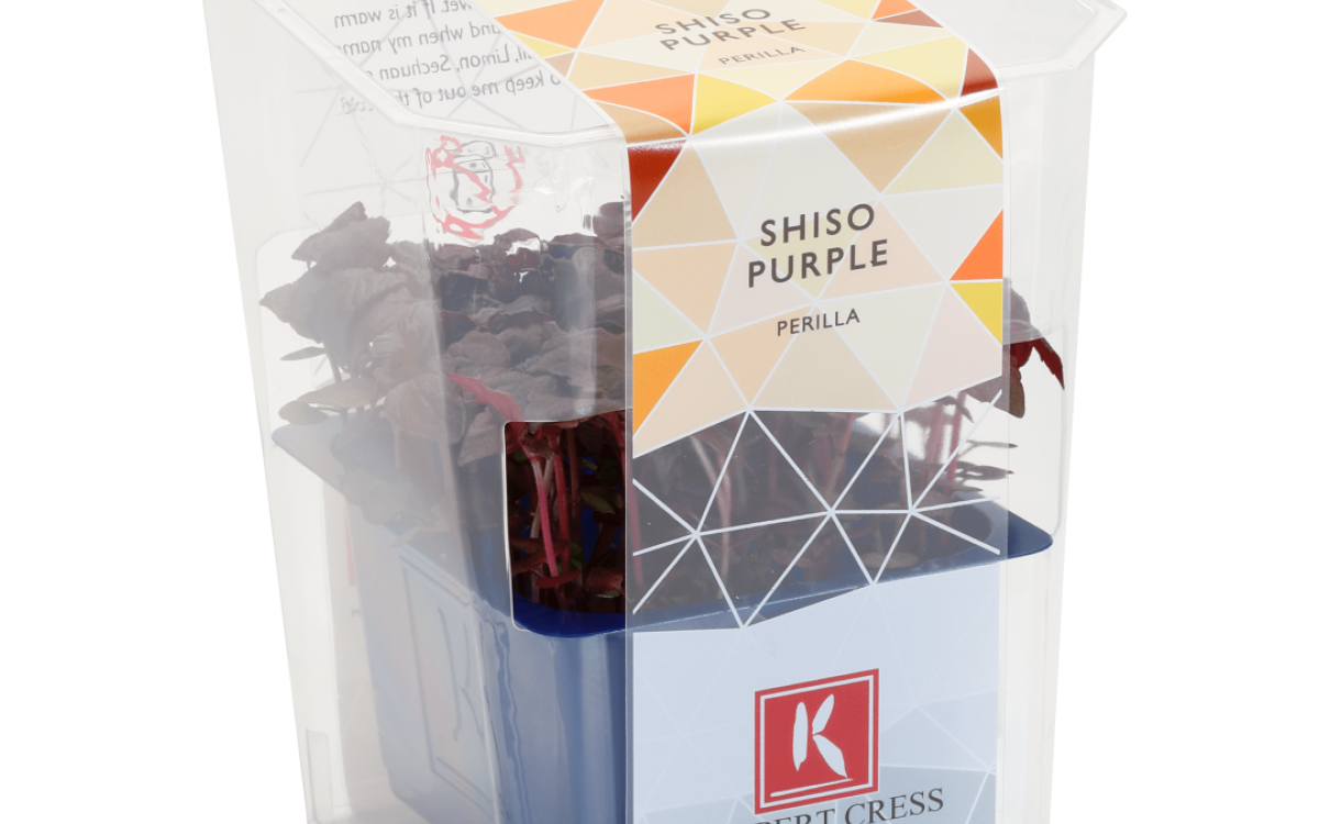 Cresssingles Shiso Purple